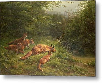 Foxes Waiting For The Prey   Metal Print by Carl Friedrich Deiker