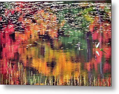 New England Reflections Metal Print by Betty LaRue