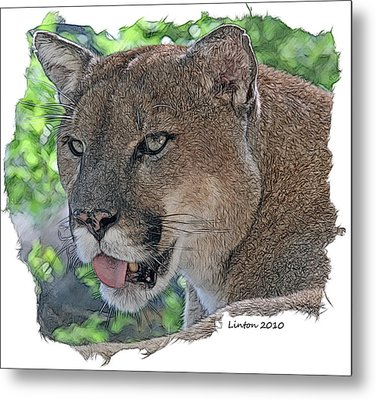 Panther 2 Metal Print by Larry Linton