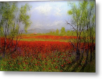 Poppie Morning 2 Metal Print