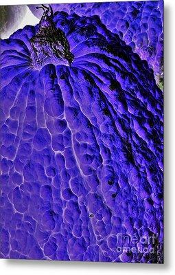Purple Pumpkin By Jasna Gopic  Metal Print by Jasna Gopic