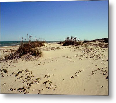 South Padre Island Dunes Metal Print by Evelyn Patrick