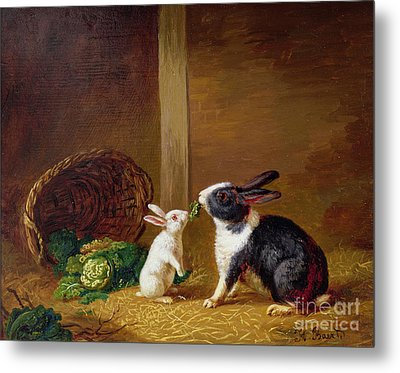 Two Rabbits Metal Print by H Baert