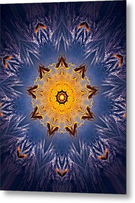 Metal Print featuring the photograph 032 by Phil Koch