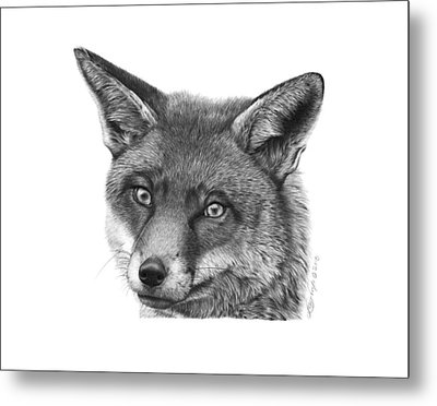 Metal Print featuring the drawing 044 Vixie The Fox by Abbey Noelle