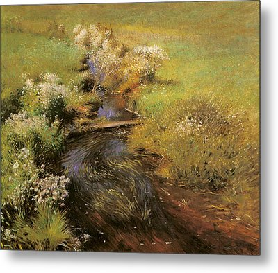 Wild Asters Metal Print by Dennis Miller Bunker