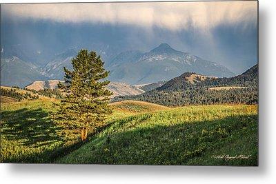 #0613 - Absaroka Range, Paradise Valley, Southwest Montana Metal Print