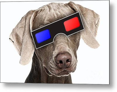 3d Dog Collection Metal Print