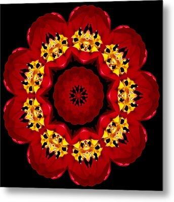 9 Petaled Design Metal Print by Baha'i Writings As Art