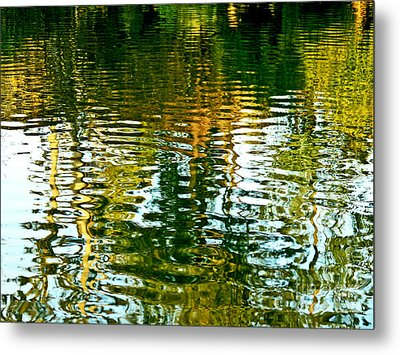 Reflections And Patterns In Nature Metal Print by Carol F Austin