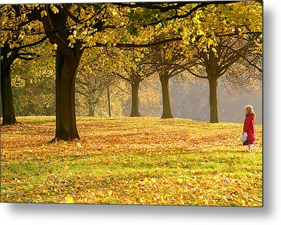 Alone In The Park Metal Print by Kobby Dagan
