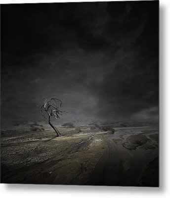 Alone Metal Print by Zoltan Toth