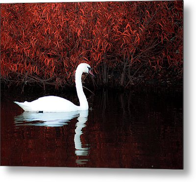 Along The Shores Of Avalon Metal Print by Ron  McGinnis