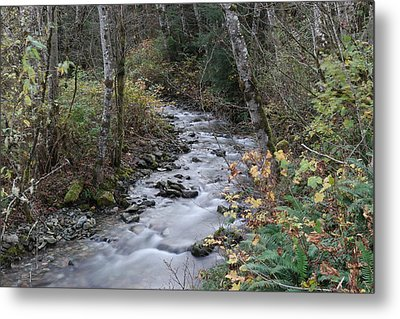 Metal Print featuring the photograph An Autumn Stream by Jeff Swan