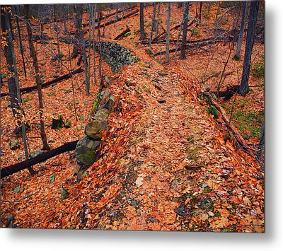 Appalachian Trail In Ny Metal Print by Raymond Salani III