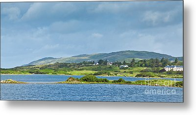 Ardmore Bay Metal Print by Gabriela Insuratelu
