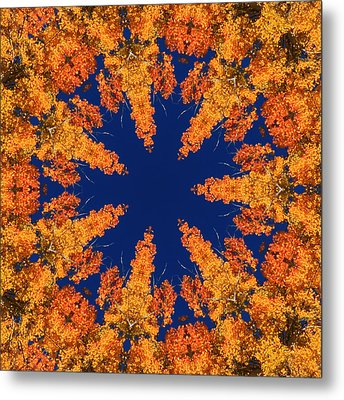 Metal Print featuring the photograph Aspen Kaleidoscope  by Bill Barber