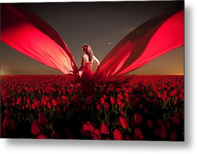 Metal Print featuring the photograph Assembling The Tulips by Dario Infini