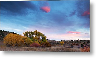 Metal Print featuring the photograph Autumn Days by Tim Reaves