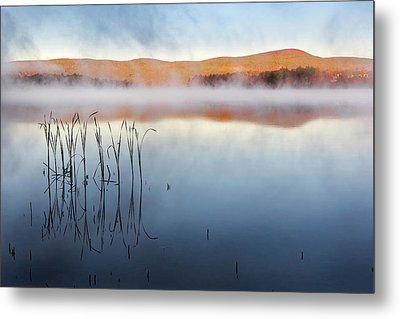Autumn Fog Metal Print by Bill Wakeley