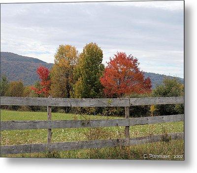 Autumn On Point Mountain Metal Print