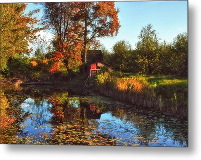 Autumn Palette Metal Print by Joann Vitali