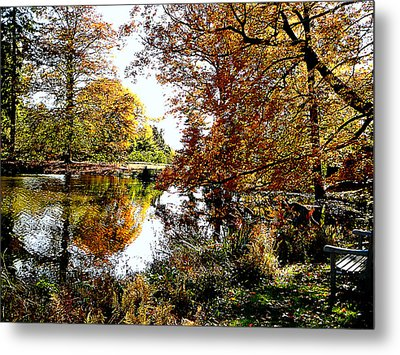 Autumn Reflections Metal Print by Susan Savad