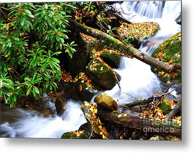 Autumn Serenity Metal Print by Thomas R Fletcher
