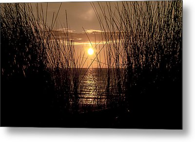 Backlight Beach Metal Print