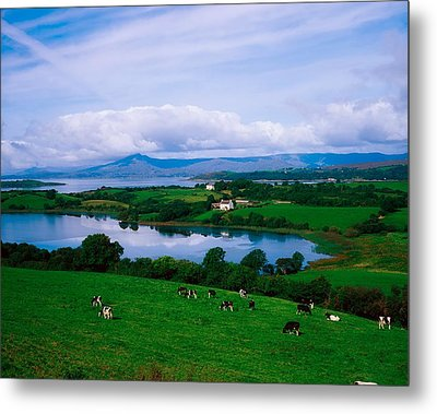 Bantry Bay, Co Cork, Ireland Metal Print by The Irish Image Collection