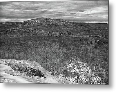Bear Mountain In Black And White Metal Print by Raymond Salani III