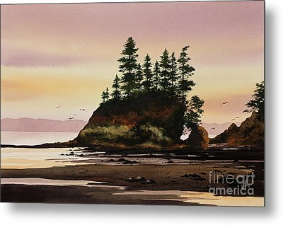 Metal Print featuring the painting Beautiful Shore by James Williamson