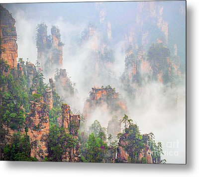 Beauty In Nature Metal Print by PuiYuen Ng
