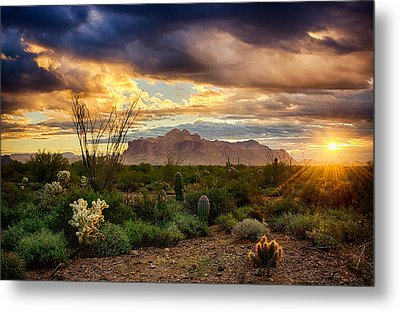 Beauty In The Desert Metal Print