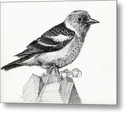 Bird Metal Print by Iglika Milcheva-Godfrey
