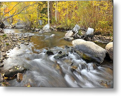 Metal Print featuring the photograph Bishop Creek In The Fall by Dung Ma