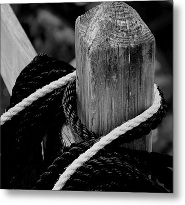 Metal Print featuring the photograph Black And White by Corinne Rhode