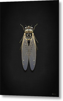 Black Cicada With Gold Accents On Black Canvas Metal Print by Serge Averbukh