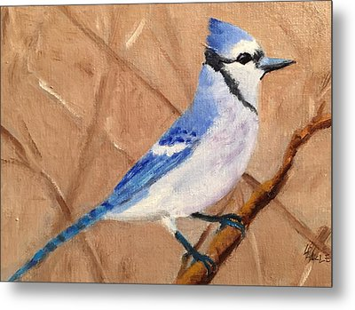 Blue Jay Metal Print by Linda Hiller