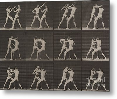 Boxing Metal Print by Eadweard Muybridge