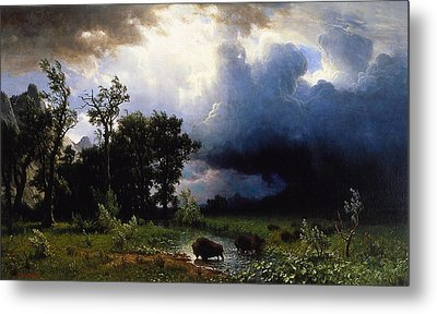 Buffalo Trail  The Impending Storm Metal Print by Albert Bierstadt