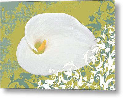 Calla Lily Metal Print by Cathie Tyler