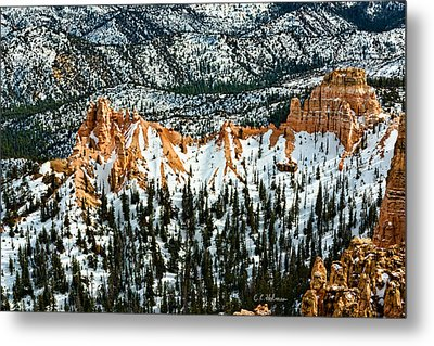 Canyon View Metal Print by Christopher Holmes