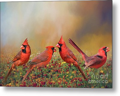 Metal Print featuring the photograph Cardinal Quartet by Bonnie Barry