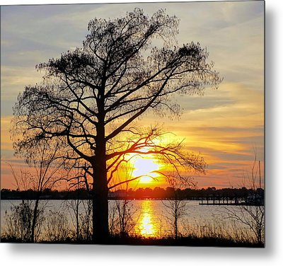 Carolina Sunset Metal Print by Victor Montgomery