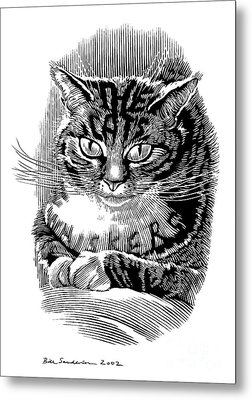 Cats Whiskers, Conceptual Artwork Metal Print