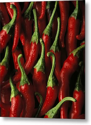 Cayenne Metal Print by Daniel Troy