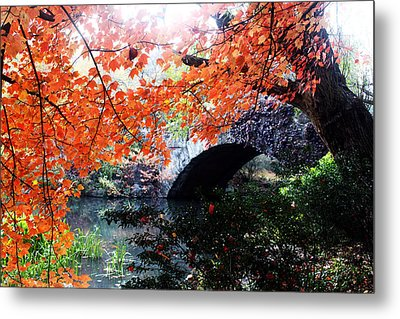 Central Park New York City Metal Print by Mark Ashkenazi