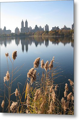 Central Park Metal Print by Yannick Guerin