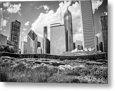 Chicago Skyline At Lurie Garden Black And White Photo Metal Print by Paul Velgos